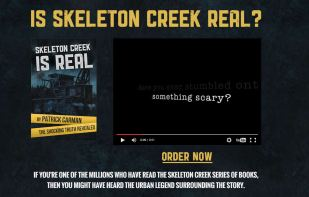 Promotional website for the book.